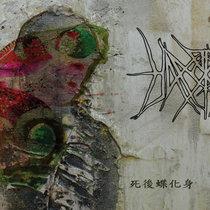 Reborn in Butterfly cover art