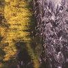 Limens Cover Art