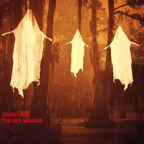 Fuzzifixion cover art