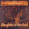 Slaughter of the Soul (Full Dynamic Range Edition) Cover Art