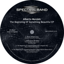 The Beginning Of Something Beautiful EP cover art