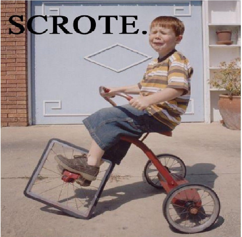 Image result for scrote