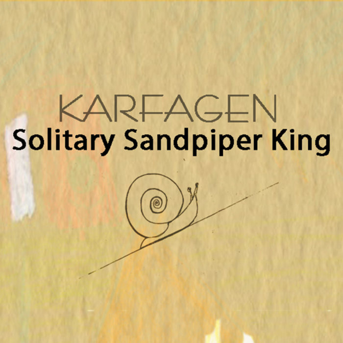 karfagen solitary sandpiper journey