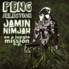 Jamin Nimjah - On A Jungle Mission EP