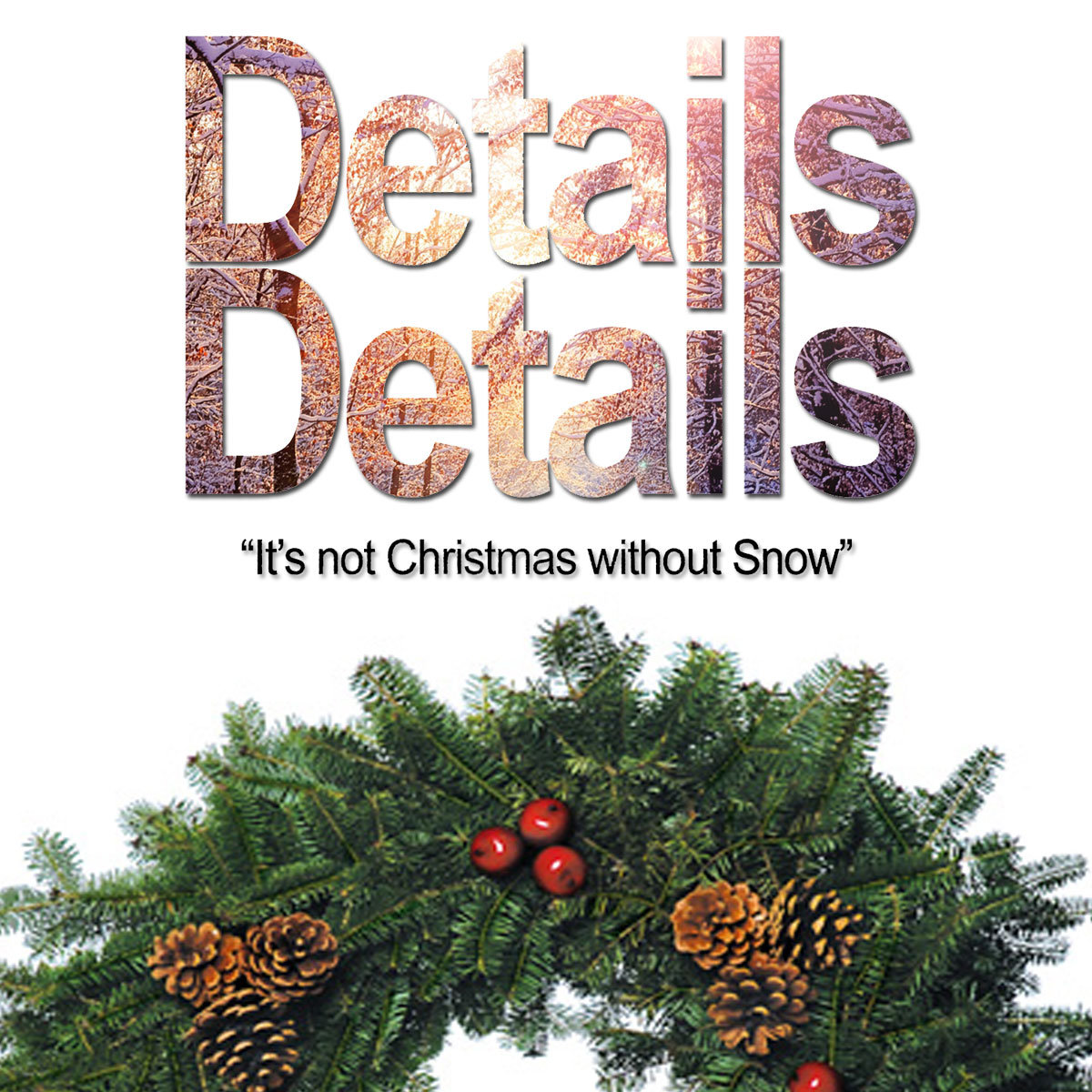 It\'s not Christmas without Snow | Details Details