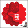 RAW DATA JAZZ: The Unorthodoxy Proxy Cover Art