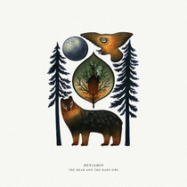 The Bear And The Barn Owl cover art