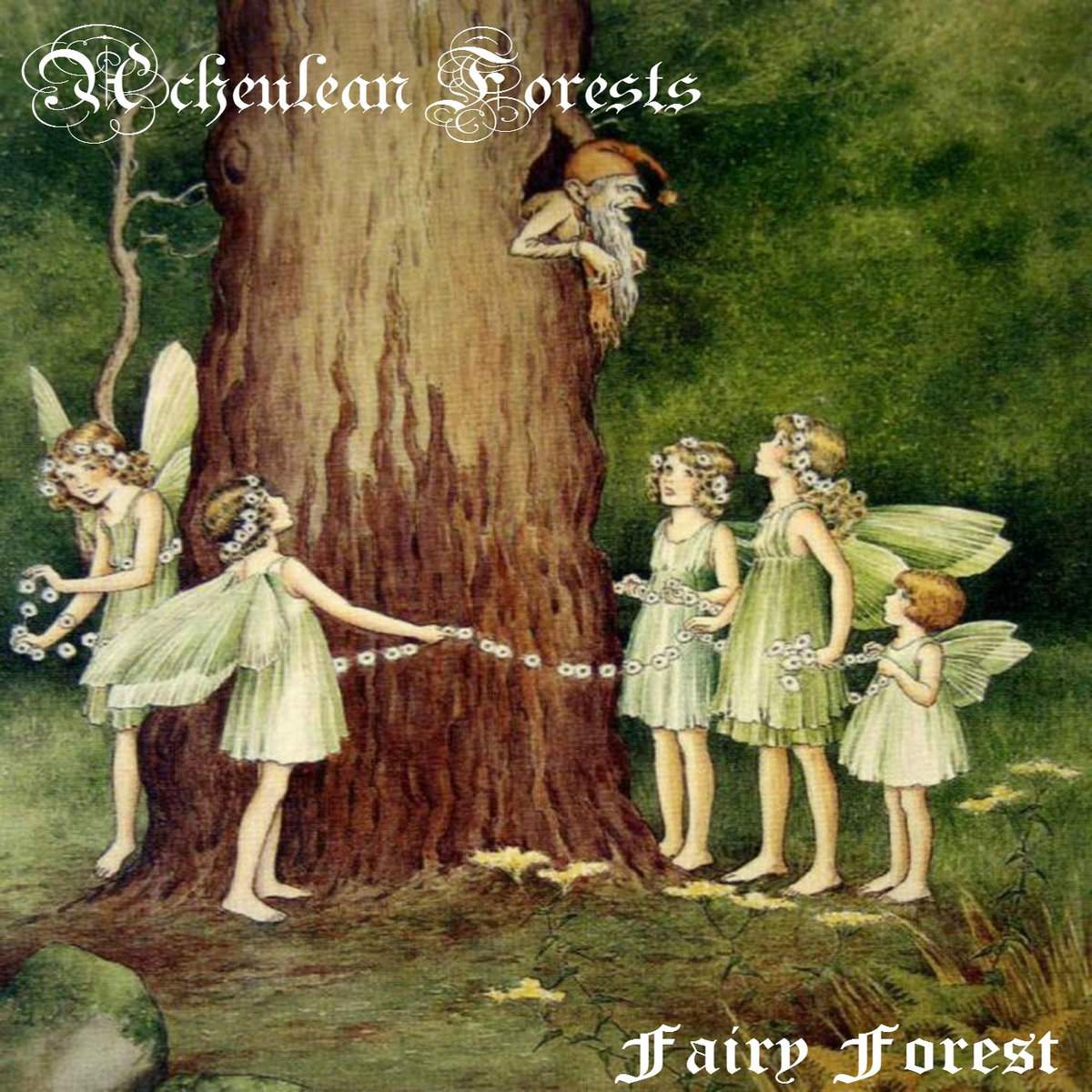 fairy forest acheulean forests