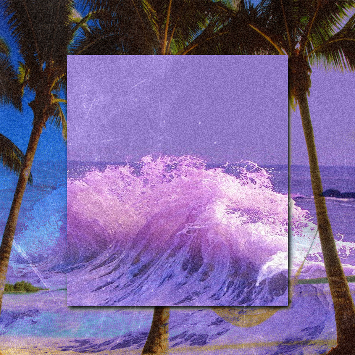 Sun, Sea and Surfing | Palm '84