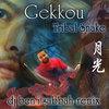 Gekkou Remixes Cover Art