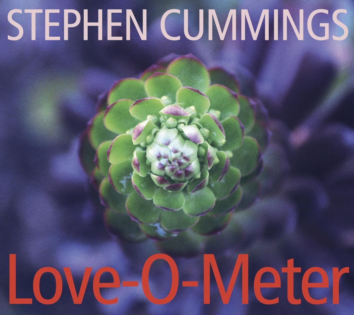Stephen Cummings - Falling Swinger