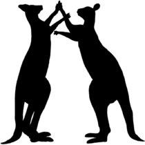 The Kangaroo Hop cover art