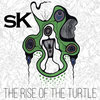 The Rise of The Turtle Cover Art