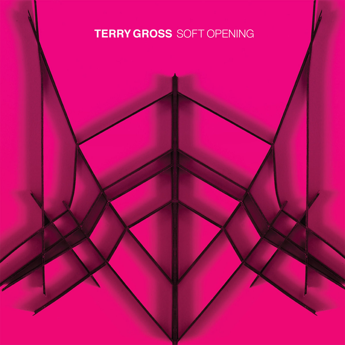Cover of Terry Gross - Soft Opening
