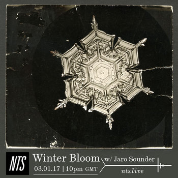 Winter Bloom (2 Hour NTS Radio Special) by Jaro Sounder