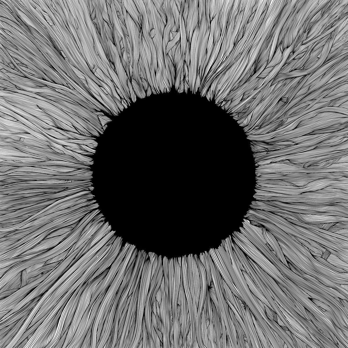 Witness | VOLA