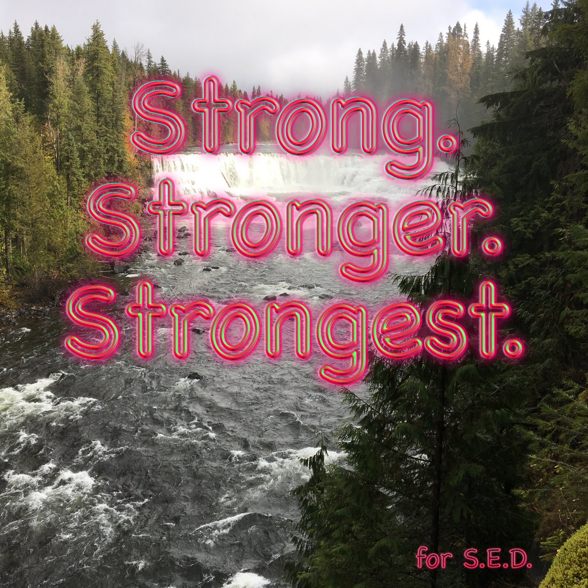 Strong. Stronger. Strongest.   Dan Silas
