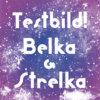 BELKA & STRELKA Cover Art