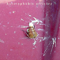 heterophobic officers cover art
