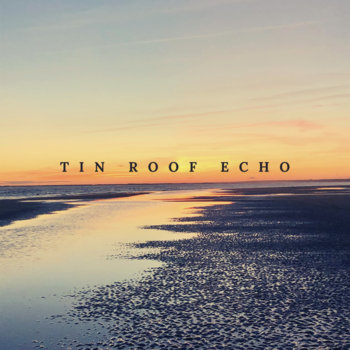 Lost Gems & False Starts (2021) by Tin Roof Echo