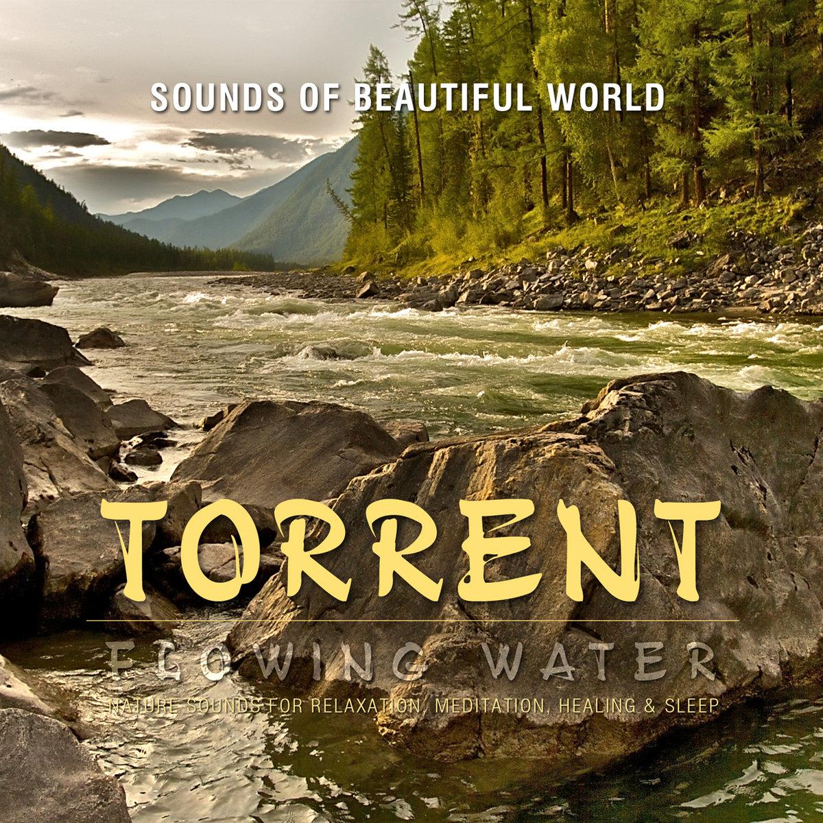 torrent serenity discography