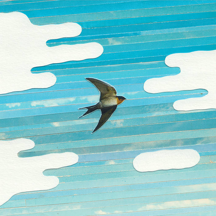"""Review – """"Steady Sparrow, Steady Flight"""" – Wired To The Sky ..."""