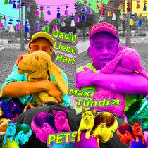 PETS cover art