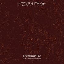 Trepidation cover art