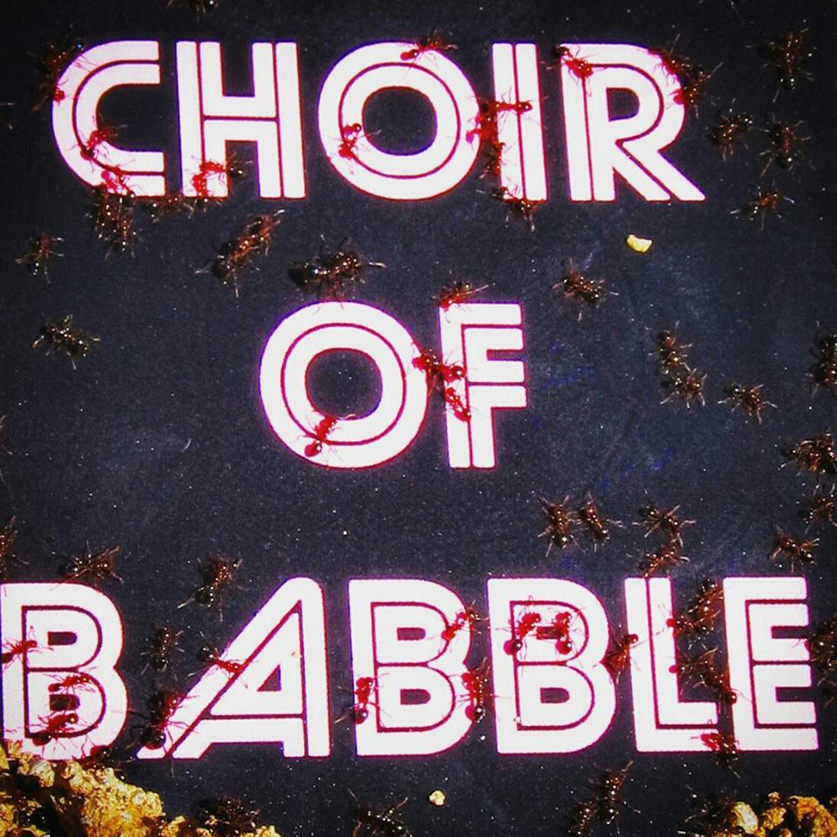 www.facebook.com/babblechoir