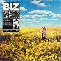 Biz - What's Left cover art