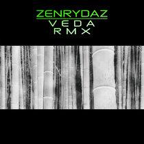 ZEN RYDAZ / VEDA - Do Shock Booze Remix - TOTEM TRAXX [TTDG89] cover art