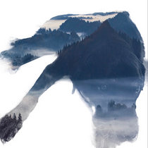 Faucoult Pendula cover art