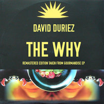 David Duriez - The Why [2020 Remastered Version] cover art