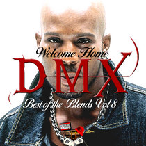 Best Of The Blends Vol 8 - DMX Remixed cover art