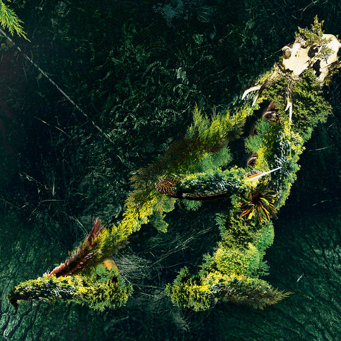Arborescent cover art
