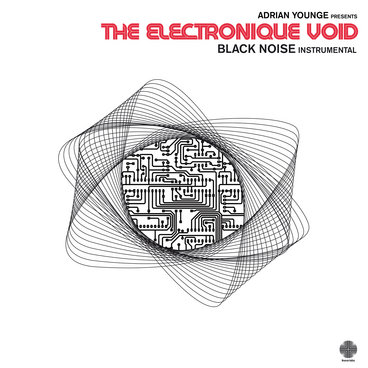 The Electronique Void Instrumentals main photo