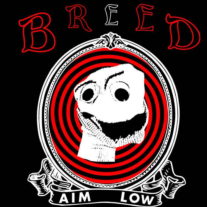 AIM LOW cover art