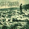 Green Plague LP Cover Art