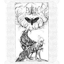 Moth's Illusion cover art