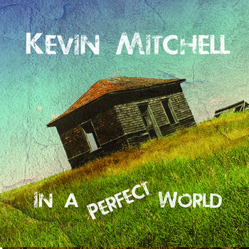 In A Perfect World  2016 by Kevin Mitchell