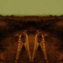 Now [LP] cover art