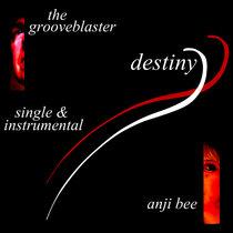 Destiny (featuring Anji Bee) (single & instrumental) cover art