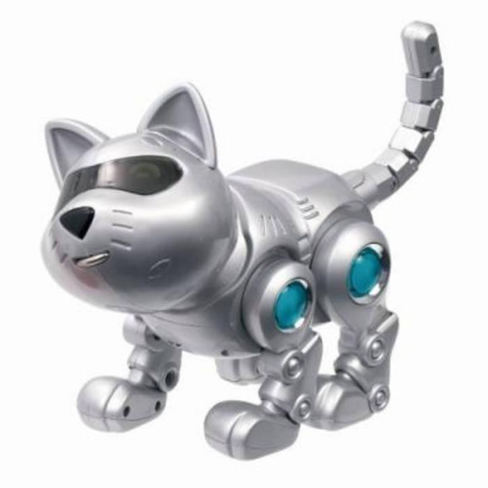 Dog Vs Toy Robot