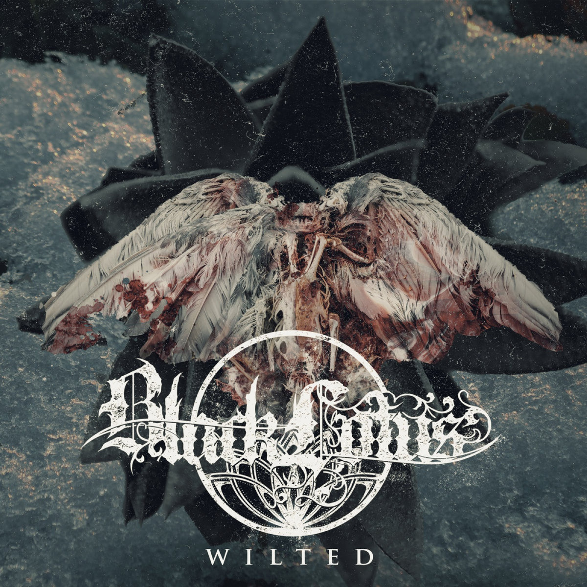 Black Lotus - WIlted (2018)