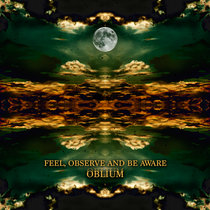 FEEL, OBSERVE, AND BE AWARE cover art
