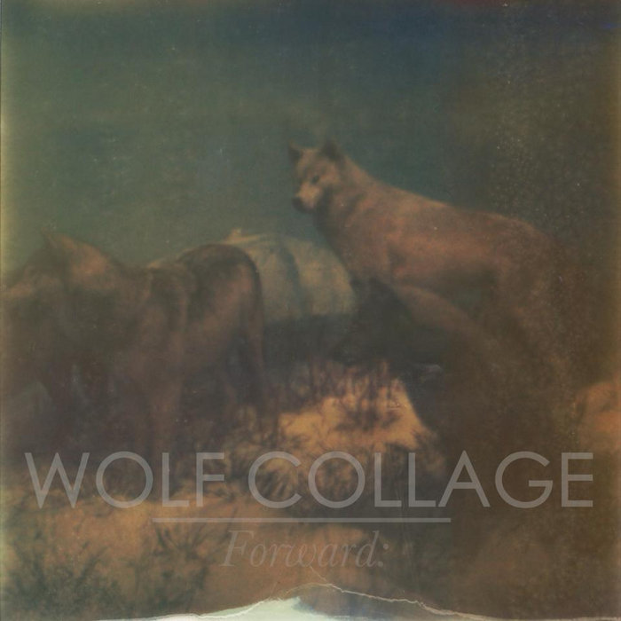 Glow, by Wolf Collage