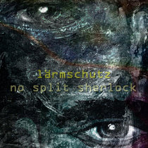 No Split Sherlock (IS#422) cover art