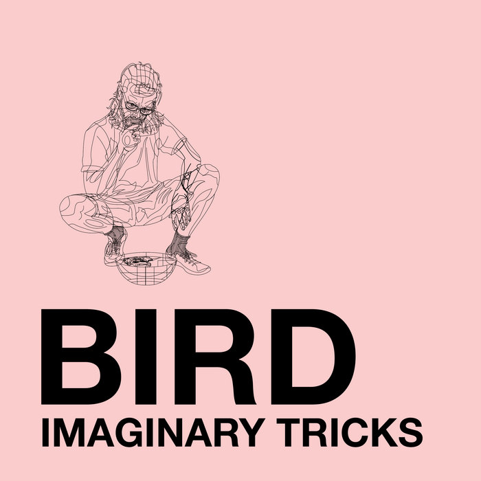 Bird Imaginary Tricks