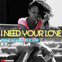I Need Your Love ft. Jamila (The Mixes) cover art