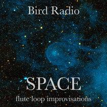 SPACE (flute loop improvisations) cover art